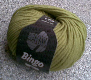 bingo-kiwi